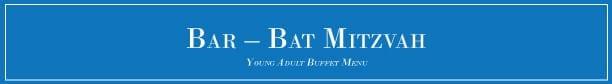 Bar_Bat_Mitzvah_2016
